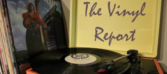 vinyl-report2